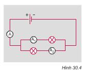 Hình 30.4 bài 7 trang 87 SGK Vật lí lớp 7