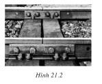 Hình 21.2 bài C5 trang 66 SGK Vật lí lớp 6