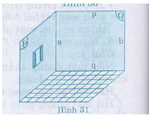 Hình 31 bài 8 trang 100 SGK Toán 8 Tập 2