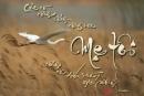 Trong bài thơ Con cò, nhà thơ Chế Lan Viên có viết: Con dù lớn vẫn là con của mẹ,Đi hết đời, lòng mẹ vẫn theo con. Ý thơ gợi cho em những suy nghĩ gì về tình mẹ trong cuộc đời của mỗi con người.