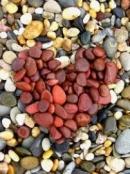 Trong một Một khúc ca, nhà thơ Tố Hữu có viết: Nếu là con chim,….nhận riêng mình? Em hiểu đoạn thơ trên như thế nào? Từ đó hãy dựa vào bài thơ Mùa xuân nho nhỏ của Thanh Hải để làm sáng tỏ lẽ sống mà đoạn thơ đã thể hiện.