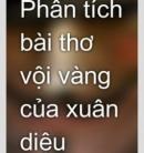"""Trong cuốn Thi nhân Việt Nam, Hoài Thanh có nhận xét về Xuân Diệu: """"Đó là một hồn thơ tha thiết, rạo rực, băn khoăn.Hãy phân tích bài thơ Vội vàng để làm sáng tỏ điều đó."""
