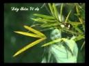 Có bạn cho rằng, bài thơ Đây thôn Vĩ Dạ của Hàn Mạc Tử chỉ thể hiện tình yêu đối với một người con gái xứ Huế. Hãy bình luận ý kiến trên.