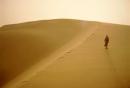 Phân tích Bài ca ngắn đi trên bãi cát (Sa hành đoản ca) của Cao Bá Quát.
