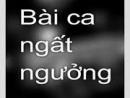 Cảm nhận Bài ca ngất ngưởng của Nguyễn Công Trứ.