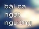 Bình giảng bài thơ Bài ca ngất ngưởng của Nguyễn Công Trứ.