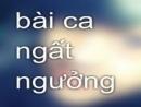Phân tích bài thơ Bài ca ngất ngưởng của Nguyễn Công Trứ. (bài 2)