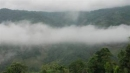 Hãy bình giảng đoạn thơ sau đây trong bài Tiếng hát con tàu của Chế Lan Viên:  Nhớ bản sương giăng, nhớ đèo mây phủ...Tình yêu làm đất lạ hóa quê hương.