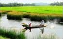 Cảm nhận về đất nước và nghệ thuật thể hiện của tác giả trong trích  đoạn thơ Đất Nước(Mặt đường khát vọng - Nguyễn Khoa Điềm).