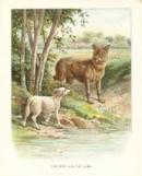 Phân tích và nêu cảm nhận về bài Chó Sói và Cừu trong thơ ngụ ngôn của La Phông-ten của Hi-pô-lít Ten.