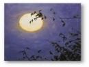 """Suy nghĩ của em về bài thơ """"Ánh trăng"""" của Nguyễn Duy"""