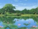 Đọc hiểu bài thơ Nhàn của Nguyễn Bỉnh Khiêm