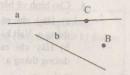 Bài 4 trang 105 - Sách giáo khoa toán 6 tập 1