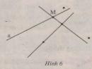 Bài 1 trang 104 - Sách giáo khoa toán 6 tập 1