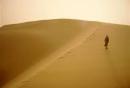 Soạn bài Bài ca ngắn đi trên bãi cát trang 40 SGK Ngữ Văn 11