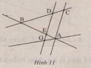 Bài 9 trang 106 - Sách giáo khoa toán 6 tập 1