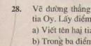 Bài 28 trang 113 - Sách giáo khoa toán 6 tập 1