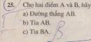 Bài 25 trang 113 - Sách giáo khoa toán 6 tập 1