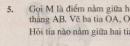 Bài 5 trang 73 - Sách giáo khoa toán 6 tập 2