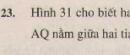 Bài 23 trang 83 - Sách giáo khoa toán 6 tập 2