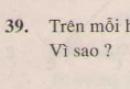 Bài 39 trang 124 - Sách giáo khoa toán 7 tập 1