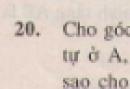 Bài 20 trang 115 - Sách giáo khoa toán 7 tập 1