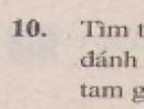 Bài 10 trang 111 - Sách giáo khoa toán 7 tập 1