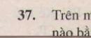 Bài 37 trang 123 - Sách giáo khoa toán 7 tập 1