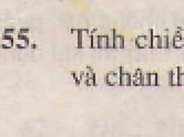 Bài 55 trang 131 - Sách giáo khoa toán 7 tập 1