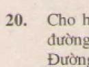 Bài 20 trang 68 - Sách giáo khoa toán 8 tập 2
