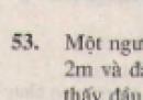 Bài 53 trang 87 - Sách giáo khoa toán 8 tập 2