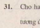 Bài 31 trang 75 - Sách giáo khoa toán 8 tập 2
