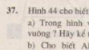 Bài 37 trang 79 - Sách giáo khoa toán 8 tập 2