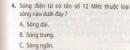 Bài 4 trang 115 sgk vật lý 12