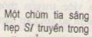 Bài 6 trang 172 sgk Vật lý lớp 11