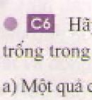 Câu 6 trang 34 - Sách giáo khoa vật lí 6