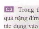 Câu 3 trang 32 - Sách giáo khoa vật lí 6