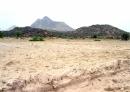 Đất feralit có đặc tính gì và ảnh hưởng như thế nào đến việc sử dụng đất trong trồng trọt