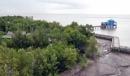 Tại sao phải đặt vấn đề sử dụng hợp lí và cải tạo tự nhiên ở Đồng bằng sông Cửu Long?