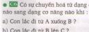 Bài C6 trang 60 sgk vật lí 8