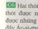 Câu 6 - trang 38 SGK vật lý 8