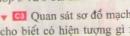 Bài C3 trang 83 sgk vật lí 7