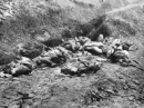 Nêu những sự kiện chính về cuộc phản công của quân Đồng minh trên các mặt trận (từ tháng 11-1942 đến tháng 6-1944).