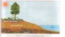 Câu hỏi lý thuyết 1 - SGK Trang 63 Địa lí 10-