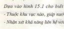 Câu hỏi 1 (Mục 1 - Bài học 18 - Trang 62 ) SGK Địa lí 8