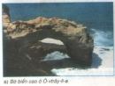 Câu 1 (Mục 2 - Bài học 19 - Trang 68) Địa lí 8