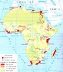 Hãy trình bày những nét chính về sự phát triển kinh tế, xã hội của các nước châu Phi sau Chiến tranh thế giới thứ hai