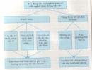 Câu hỏi lý thuyết 6 - SGK Trang 140 Địa lí 10-
