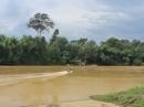 Vì sao phải bảo vệ và phát triển rừng đầu nguồn, hạn chế ô nhiễm nước của các dòng sông ở Đông Nam Bộ? (trang 114, sgk)
