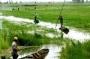Nêu một số khó khăn chính về mặt tự nhiên ở đồng bằng sông Cửu Long? (trang 126 sgk)